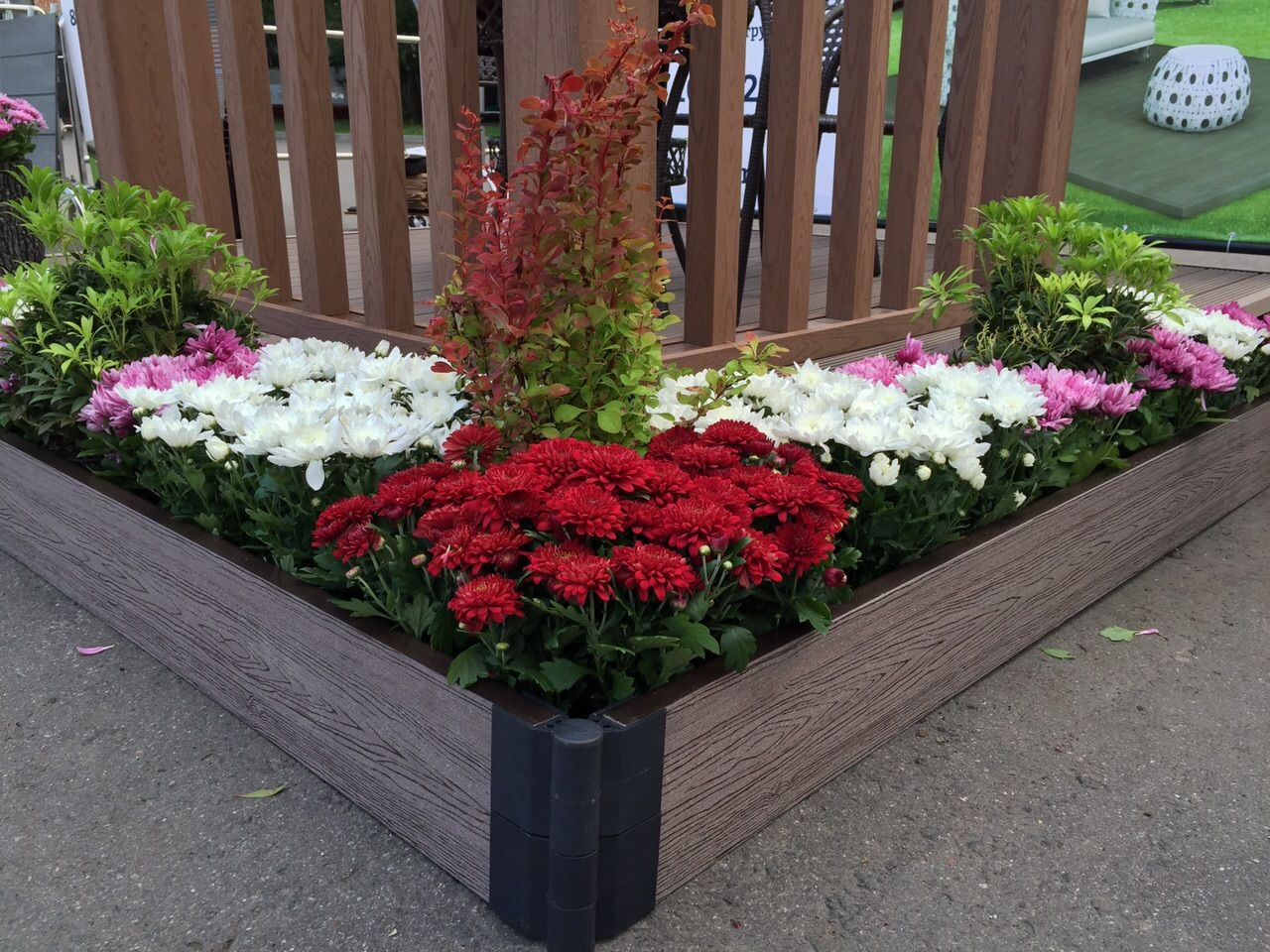 Фото квітників на дачі 22 фотография
